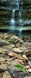 κράτος sano πάρκων της Αλαμπάμ&alpha Στοκ Εικόνα
