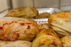 κρέας λάχανων που γεμίζεται Στοκ φωτογραφία με δικαίωμα ελεύθερης χρήσης