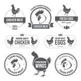 Κρέας και αυγά 1 κοτόπουλου Στοκ Εικόνες