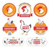 Κρέας και αυγά 2 κοτόπουλου Στοκ Φωτογραφία