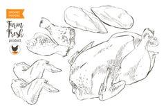 Κρέας κοτόπουλου Στοκ φωτογραφίες με δικαίωμα ελεύθερης χρήσης