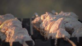 Κρέας μαγείρων ατόμων στα οβελίδια Ψημένο στη σχάρα στροφές κρέας χεριών ατόμων σε mangal Μαγειρεύοντας τρόφιμα πικ-νίκ Ελέγχοντα
