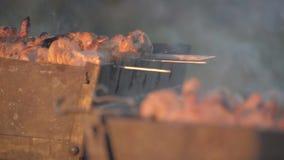 Κρέας μαγείρων ατόμων στα οβελίδια Ψημένο στη σχάρα στροφές κρέας χεριών ατόμων σε mangal Μαγειρεύοντας τρόφιμα πικ-νίκ Ελέγχοντα απόθεμα βίντεο