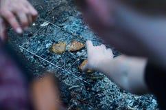 Κρέας στη σχάρα στο δάσος Στοκ Εικόνα