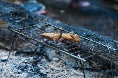 Κρέας στη σχάρα στο δάσος Στοκ φωτογραφία με δικαίωμα ελεύθερης χρήσης
