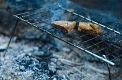 Κρέας στη σχάρα στο δάσος Στοκ Εικόνες