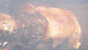 Κρέας στον οβελό απόθεμα βίντεο