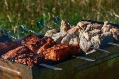 Κρέας σχαρών σχαρών Στοκ Εικόνα