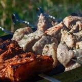 Κρέας σχαρών σχαρών Στοκ Φωτογραφίες