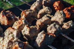 Κρέας σχαρών σχαρών Στοκ εικόνα με δικαίωμα ελεύθερης χρήσης