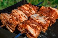 Κρέας σχαρών σχαρών Στοκ εικόνες με δικαίωμα ελεύθερης χρήσης