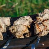 Κρέας σχαρών σχαρών Στοκ Εικόνες