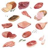 Κρέας σχεδίων Watercolor διανυσματική απεικόνιση