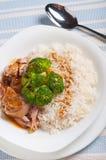 Γεύμα καλύμματος ρυζιού brocoli της Τουρκίας Στοκ φωτογραφία με δικαίωμα ελεύθερης χρήσης