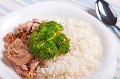 Γεύμα καλύμματος ρυζιού brocoli της Τουρκίας Στοκ φωτογραφίες με δικαίωμα ελεύθερης χρήσης