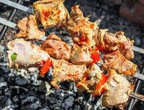 Κρέας της Τουρκίας shashlik στα οβελίδια Στοκ φωτογραφίες με δικαίωμα ελεύθερης χρήσης