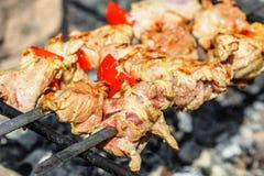 Κρέας της Τουρκίας shashlik στα οβελίδια Στοκ εικόνες με δικαίωμα ελεύθερης χρήσης