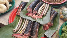 Κρέας φιδιών Στοκ Εικόνες