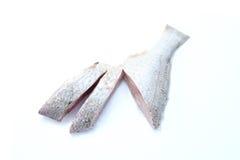 κρέας ψαριών Στοκ φωτογραφίες με δικαίωμα ελεύθερης χρήσης