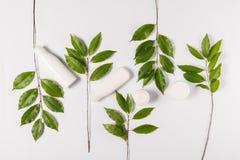 Κρέμα και λοσιόν με τα πράσινα φύλλα Στοκ φωτογραφία με δικαίωμα ελεύθερης χρήσης