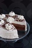 κρέμα κακάου κέικ Στοκ φωτογραφίες με δικαίωμα ελεύθερης χρήσης