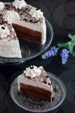 κρέμα κακάου κέικ Στοκ Εικόνες
