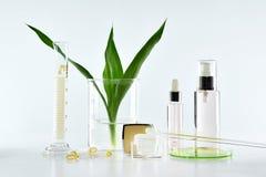 Κρέμα λοσιόν και καλλυντικά εμπορευματοκιβώτια μπουκαλιών με τα πράσινα βοτανικά φύλλα και επιστημονικά γυαλικά, κενή συσκευασία  Στοκ Εικόνες
