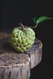 κρέμα μήλων φρέσκια Στοκ εικόνα με δικαίωμα ελεύθερης χρήσης