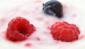 κρέμα μούρων Στοκ Φωτογραφία
