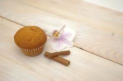κρέμα cupcake Στοκ φωτογραφίες με δικαίωμα ελεύθερης χρήσης