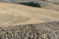 Κρήτη Senesi Στοκ φωτογραφία με δικαίωμα ελεύθερης χρήσης