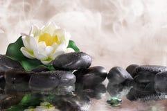 Κρίνος νερού στις μαύρες πέτρες με το νερό και τον ατμό Στοκ Φωτογραφία