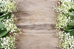 Κρίνος των λουλουδιών κοιλάδων στο ξύλινο υπόβαθρο Στοκ Φωτογραφίες