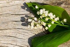 Κρίνος των λουλουδιών κοιλάδων στο ξύλινο υπόβαθρο Στοκ φωτογραφία με δικαίωμα ελεύθερης χρήσης