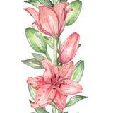 Κρίνος 3 υψηλό watercolor ποιοτικής ανίχνευσης ζωγραφικής διορθώσεων πλίθας photoshop πολύ Στοκ φωτογραφία με δικαίωμα ελεύθερης χρήσης