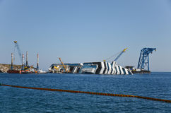 Κρίνος 3 νησιών - κρουαζιερόπλοιο 1 αποκατάστασης Στοκ Εικόνα