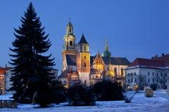 Κρακοβία - βασιλικός καθεδρικός ναός - Hill Wawel - Πολωνία στοκ εικόνες με δικαίωμα ελεύθερης χρήσης