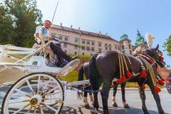 Κρακοβία (Κρακοβία) - γύρος μεταφορών αλόγων της Πολωνίας σε Wawel Castle στοκ φωτογραφίες