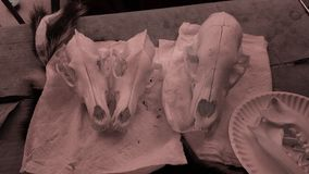 Κρανία με το φίλτρο στοκ φωτογραφία με δικαίωμα ελεύθερης χρήσης