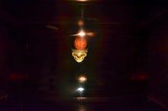 Κρανίο από έναν τρισδιάστατο προβολέα Στοκ Εικόνα