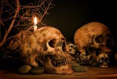 Κρανίο κάτω από το φως κεριών, θέμα αποκριών Στοκ Φωτογραφία