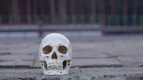 Κρανίο κοντά στο δρόμο Κίνδυνος προσοχής στη δολοφονία τροχαίων ατυχημάτων φιλμ μικρού μήκους