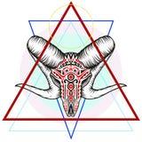 Κρανίο κριού με ένα γεωμετρικό σύμβολο στοκ φωτογραφίες με δικαίωμα ελεύθερης χρήσης
