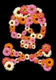 κρανίο λουλουδιών Στοκ Φωτογραφία