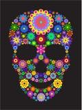 κρανίο λουλουδιών Στοκ εικόνα με δικαίωμα ελεύθερης χρήσης