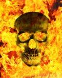 Κρανίο πυρκαγιάς Στοκ Εικόνες