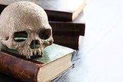 Κρανίο στα βιβλία Στοκ εικόνα με δικαίωμα ελεύθερης χρήσης