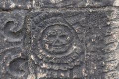 Κρανίο στο λουλούδι στο των Μάγια τοίχο Στοκ φωτογραφία με δικαίωμα ελεύθερης χρήσης