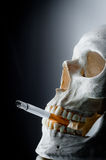 κρανίο τσιγάρων Στοκ φωτογραφίες με δικαίωμα ελεύθερης χρήσης