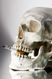 κρανίο τσιγάρων Στοκ εικόνες με δικαίωμα ελεύθερης χρήσης